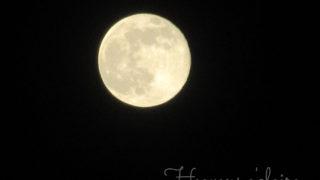 20170511ウエサク満月