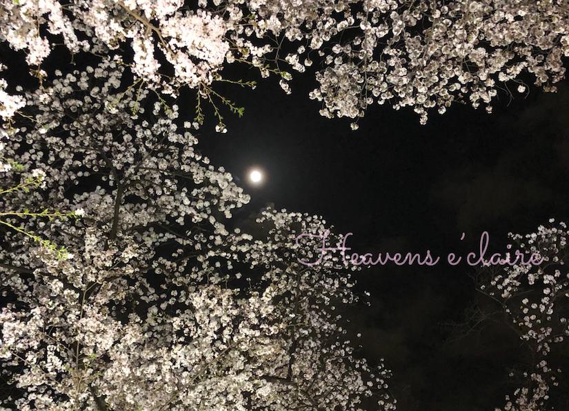 千鳥ヶ淵桜と月